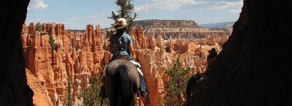 horse-rides-in-bryce